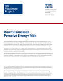 Business Perceptions about Energy Risks